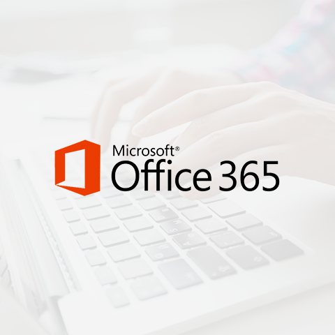 Office 365 - Bing e MSN